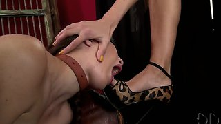 Wild dominating bitch clara g. is unsparingly scoffing on tied up to the armchair blonde girl tiffany doll.