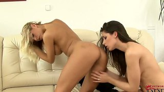 Beauties wivien and zafira like licking each other