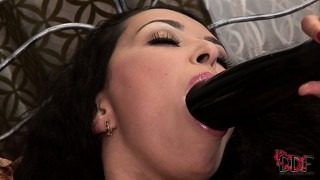 Driving a huge dildo in and out of her ass, the wild brunette finds great pleasure