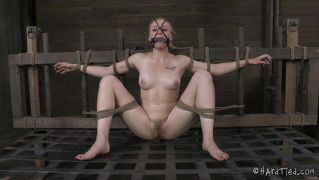 Teen tied and used