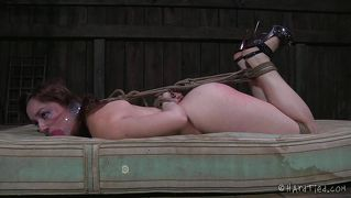 Piggy tied up and shocked into submission