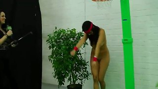 Money talks show with horny young chicks playing mini basketball and a dildo on a long pole
