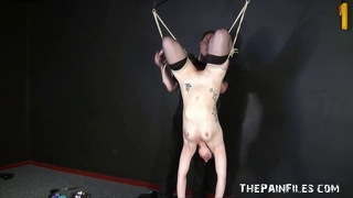 Suspended sexual slavery of isabel dean toy fucked