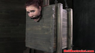 Maledoms ass play with fetish box slut